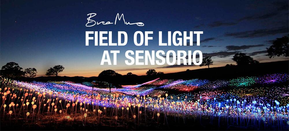 Bruce Munro: Field of Light at Sensorio