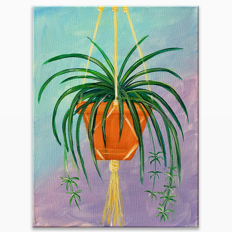 Spider Plant Virtual Painting Class
